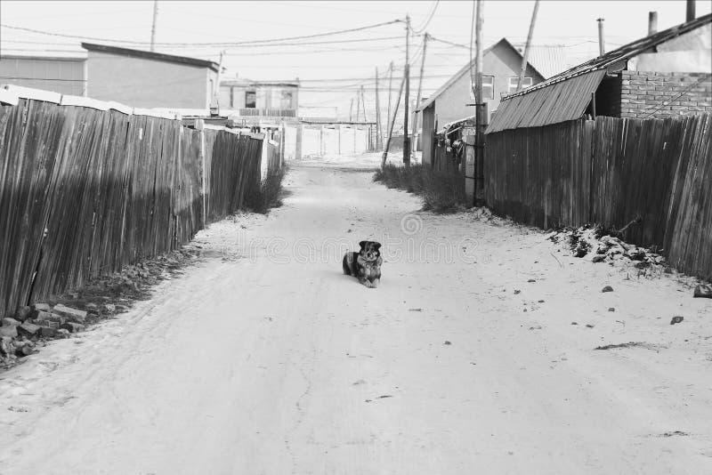 Samotnie w ulicie zdjęcie royalty free