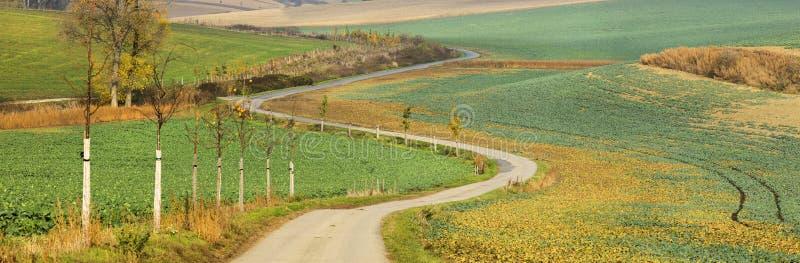 Samotnie wyginająca się rolna droga w jesieni polach zdjęcie stock