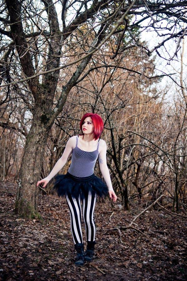 samotny ciemny las zdjęcie royalty free