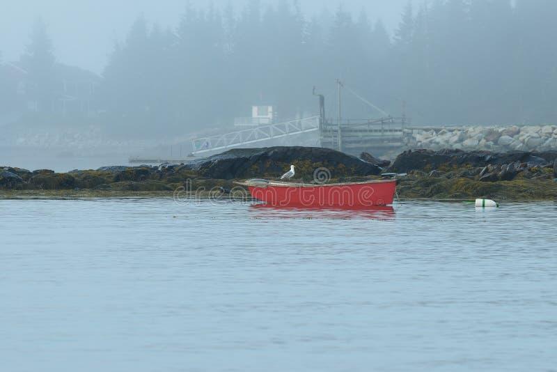 Samotny czerwieni rowboat i seagull obrazy royalty free