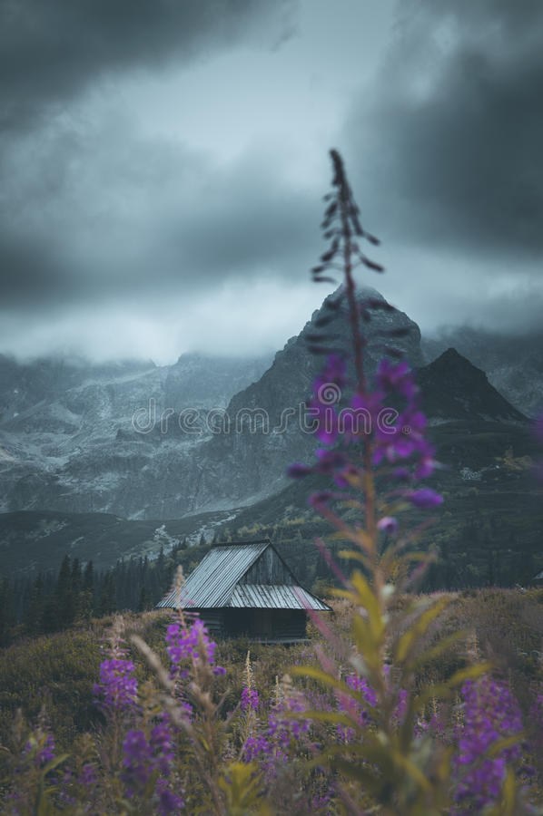Samotny dom i wspaniały widok dla gór zdjęcie royalty free