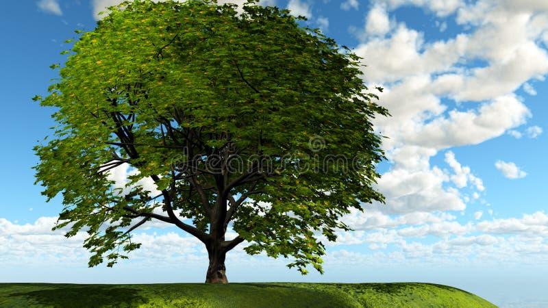 samotny drzewo royalty ilustracja