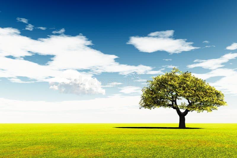 Samotny drzewo przy łąką i niebieskim niebem ilustracji