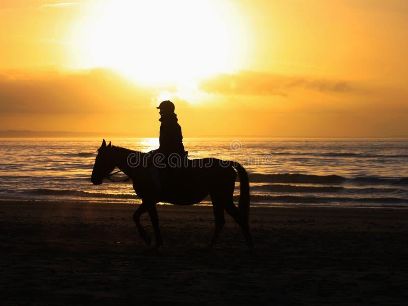 samotny jeździec obraz royalty free