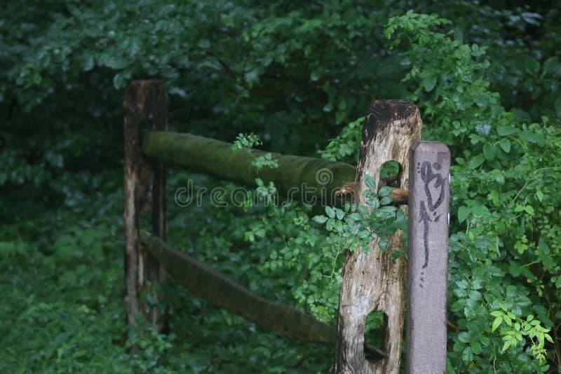 Samotny ogrodzenie zdjęcie stock