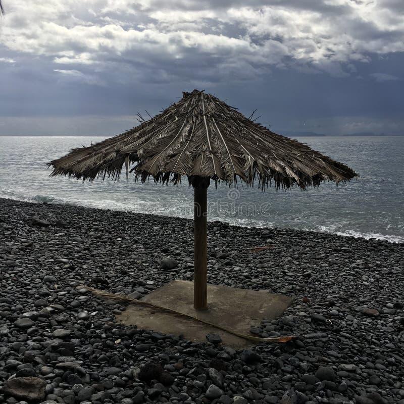 samotny parasolkę fotografia royalty free