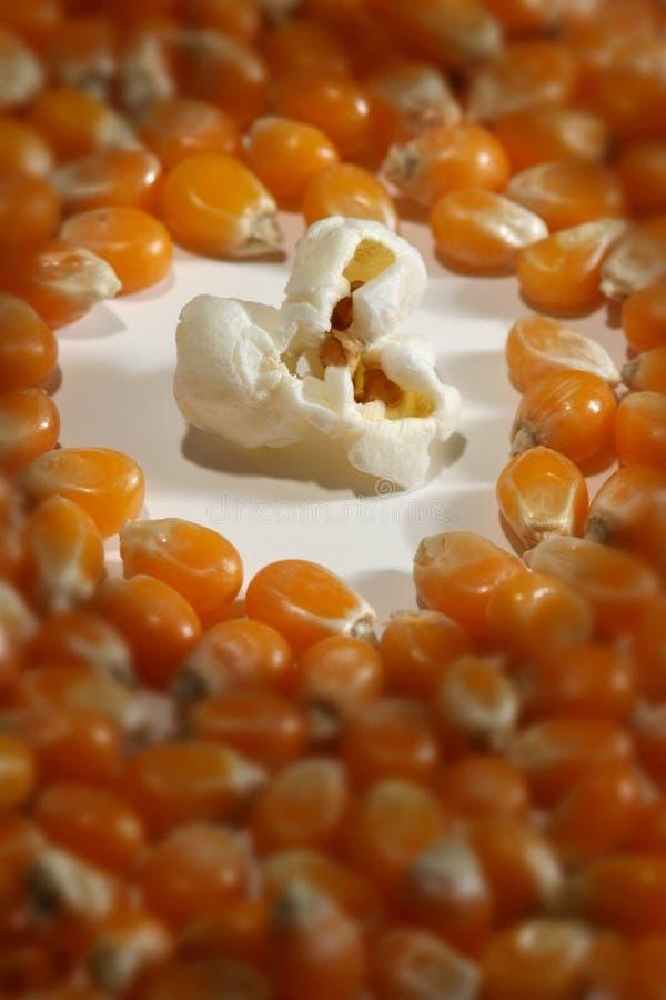 samotny popcorn obrazy royalty free