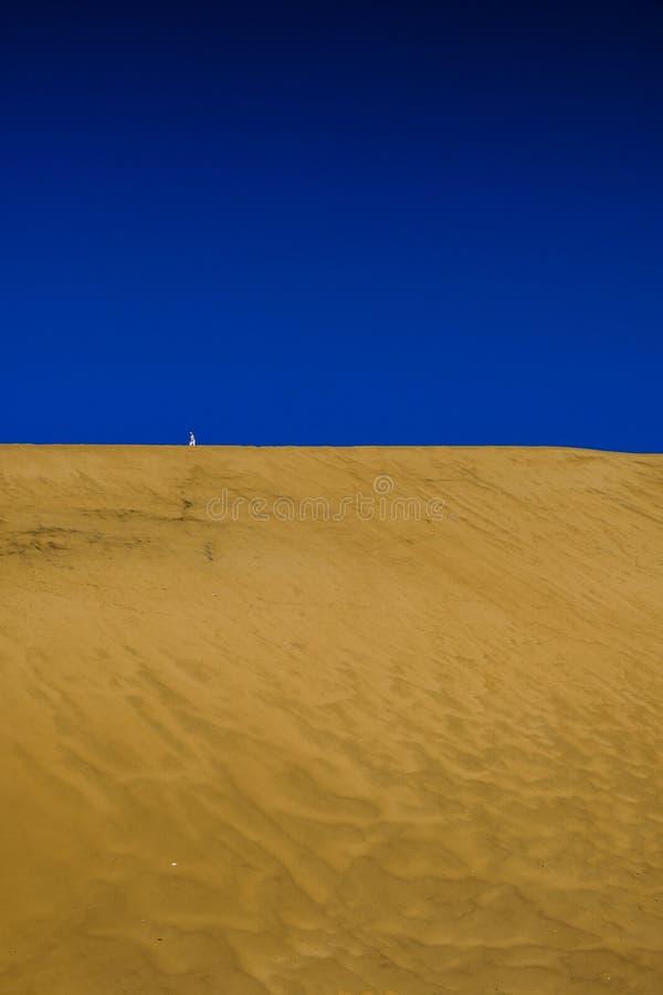 Samotny turysta na diunie 7 Namibia obrazy royalty free