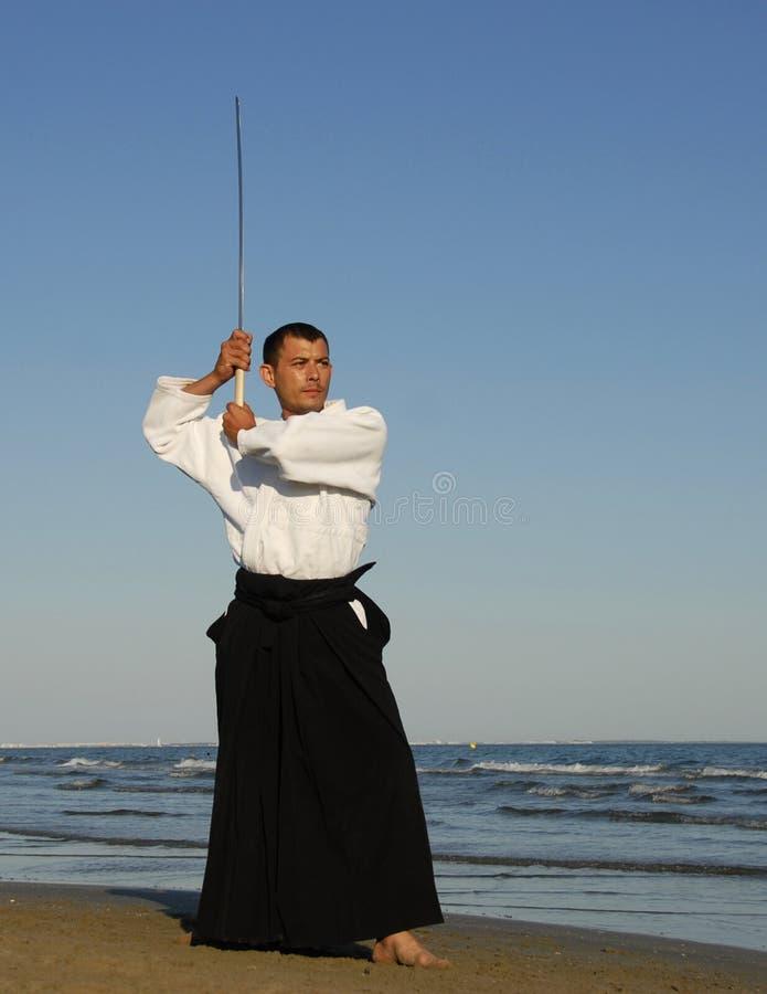 Samourai royalty free stock image