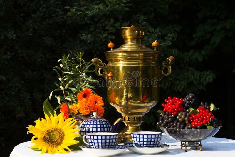 Samovar, copos do chá, flores vermelhas com espinheiro cerval dos ramos, flowe fotografia de stock