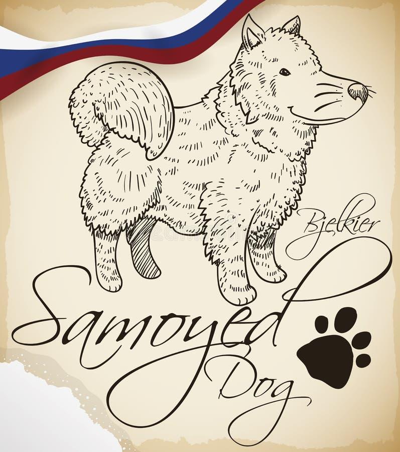Samoyed Psi rysunek z Rosyjskim faborkiem i śniegiem, Wektorowa ilustracja ilustracja wektor