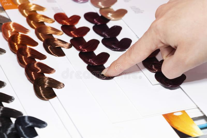 Sample hair colors, different shades of hair directory of hair colors.  stock image