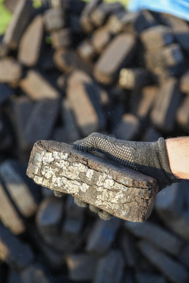 Sample of peat briquette in hand, production of alternative fuels. Raw material stock photography