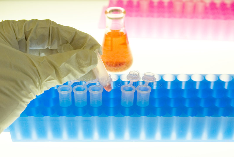 Sample Preparation. Sample ready to be analyzed in a biotech laboratory royalty free stock photos