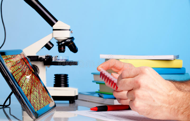 Samples test. Test biopsy c on microscope for cancer cells royalty free stock photo