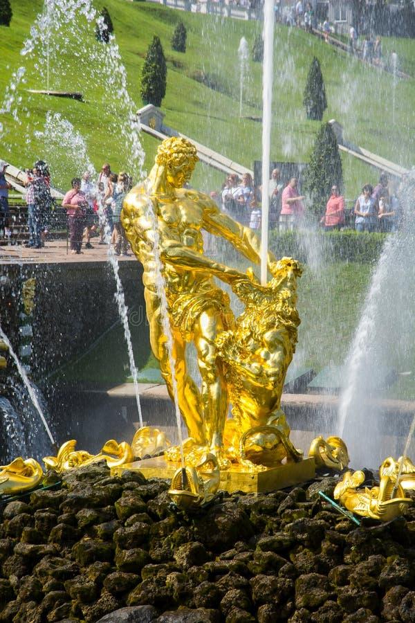 Samson fontanna w Niskim parku Peterhof, St Petersburg, Rosja fotografia royalty free