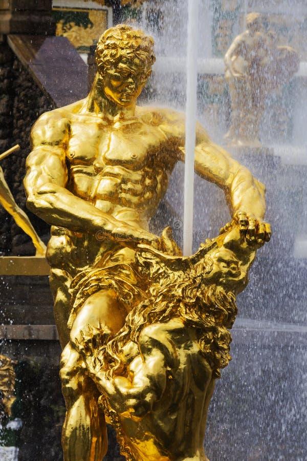 Samson fontanna w Peterhof, Rosja obraz royalty free