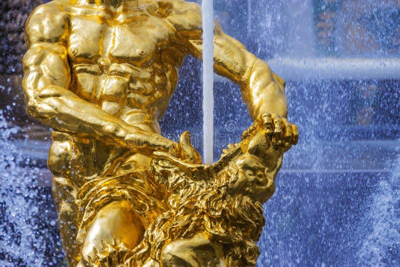 Samson fountain in Peterhof,Russia royalty free stock photography