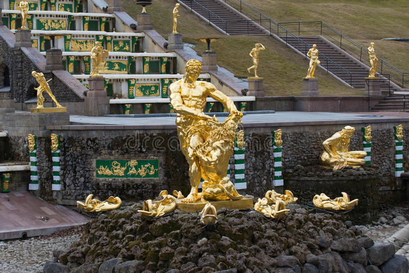 Samson tearing the lion's jaws. The sculpture of the Big cascade fountain in Peterhof royalty free stock photo