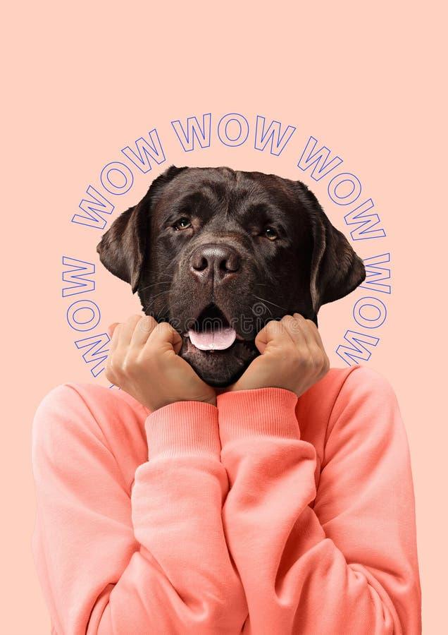 Samtida konstcollage eller stående av den förvånade hövdade kvinnan för hund Modernt begrepp för kultur för zine för stilpopkonst royaltyfria foton