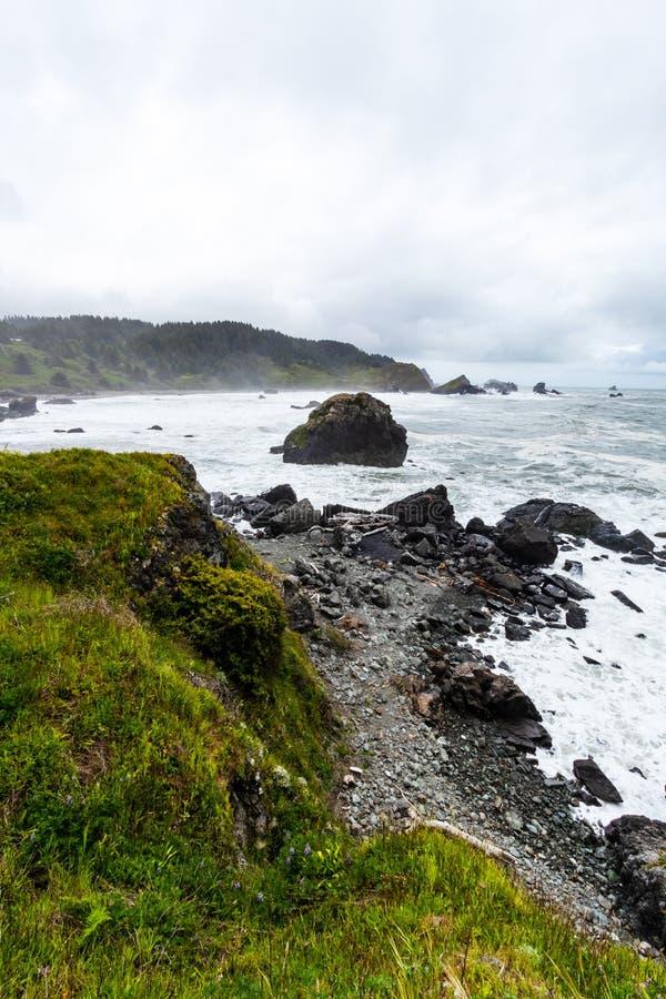 Samuel H Boardman State Park, Oregon, Costa Oeste, Estados Unidos da América, Travel USA, ao ar livre, aventura, paisagem, flores imagens de stock