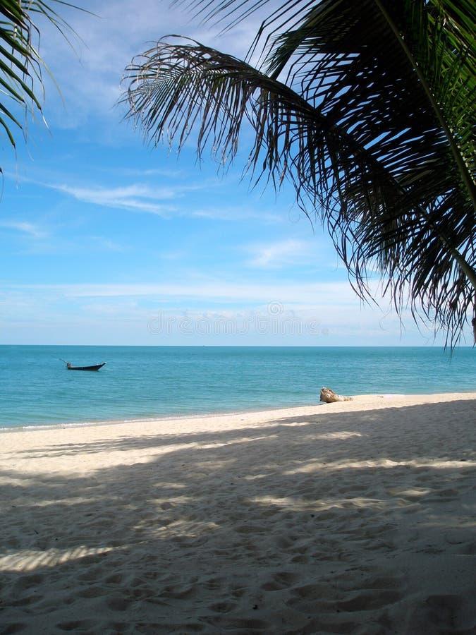 samui lamai koh пляжа стоковые изображения