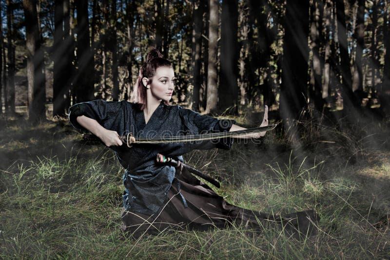 Samurai Royalty Free Stock Images