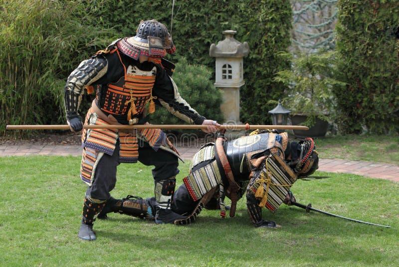 Samurai warriors royalty free stock image
