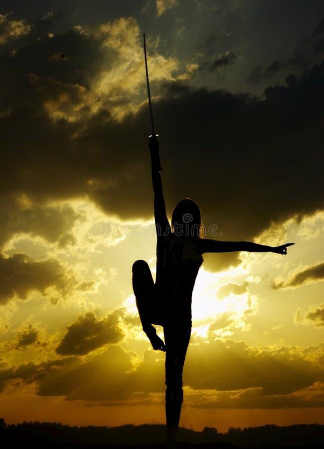 Download Samurai Woman Stock Images - Image: 7987964