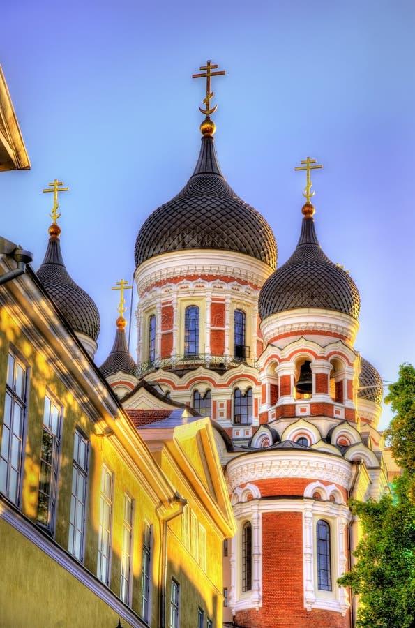 San Alexander Nevsky Cathedral a Tallinn fotografie stock libere da diritti