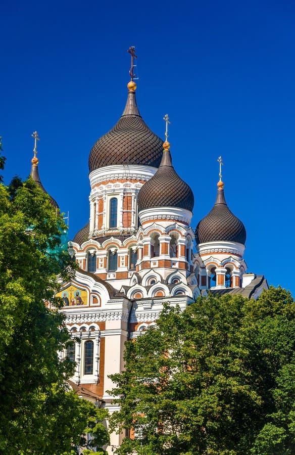 San Alexander Nevsky Cathedral a Tallinn fotografia stock libera da diritti