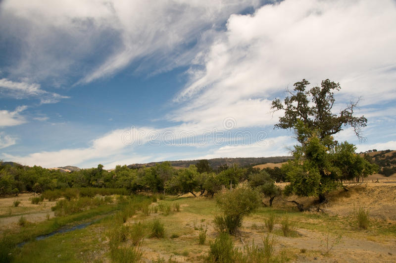 San Andreas Fault in farmland. This creek bed is usually dry. It is the exact fault line of the San Andreas Fault in Parkfield, CA. This image is portrait stock image