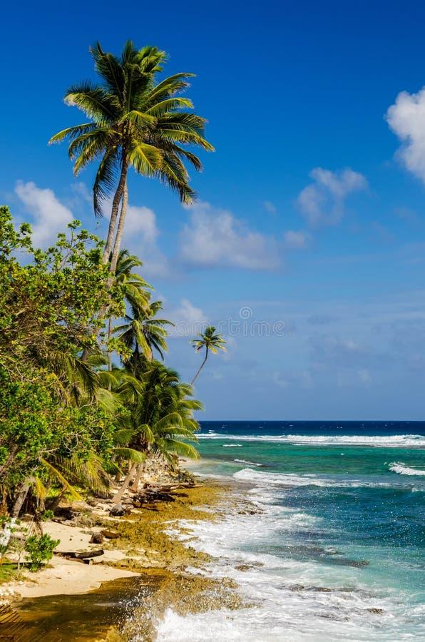 San Andres海岛海岸线在哥伦比亚 免版税库存图片