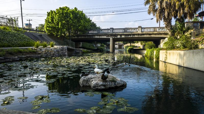 San Antonio river walk stock photography