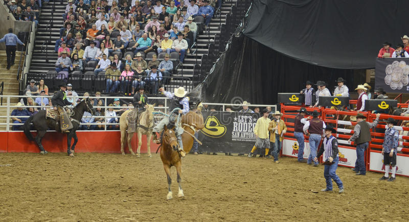 San Antonio Rodeo image stock