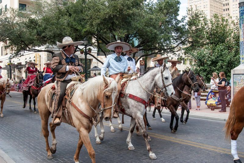 San Antonio Rodeo Parade Riders. SAN ANTONIO, UNITED STATES- JANUARY 29, 2011: Latino cowboys herd cows before the San Antonio rodeo royalty free stock photography