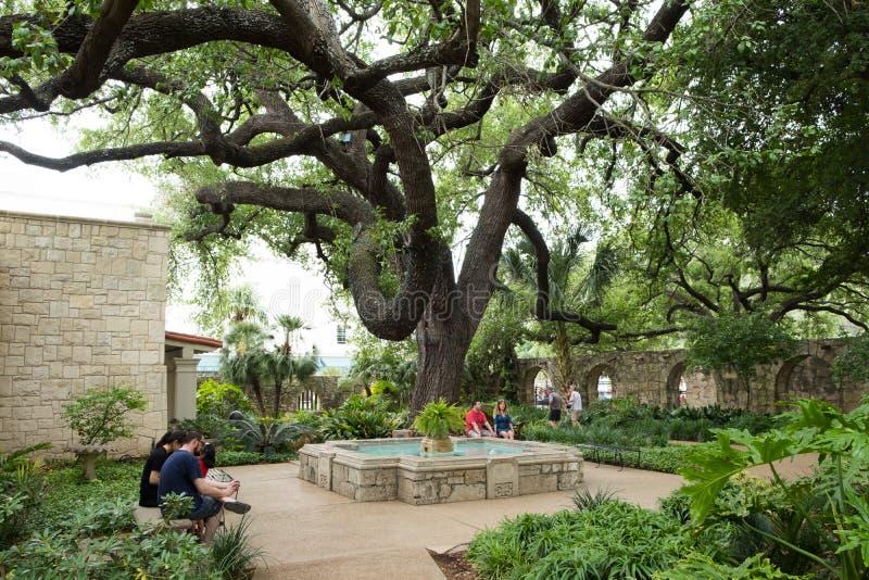 Alamo San Antonio Texas royalty free stock photos