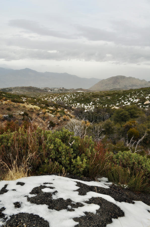 San Bernardino Mountains National Forest Snowfall stock fotografie