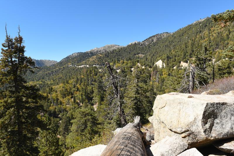 San Bernardino National Forest royalty-vrije stock afbeelding