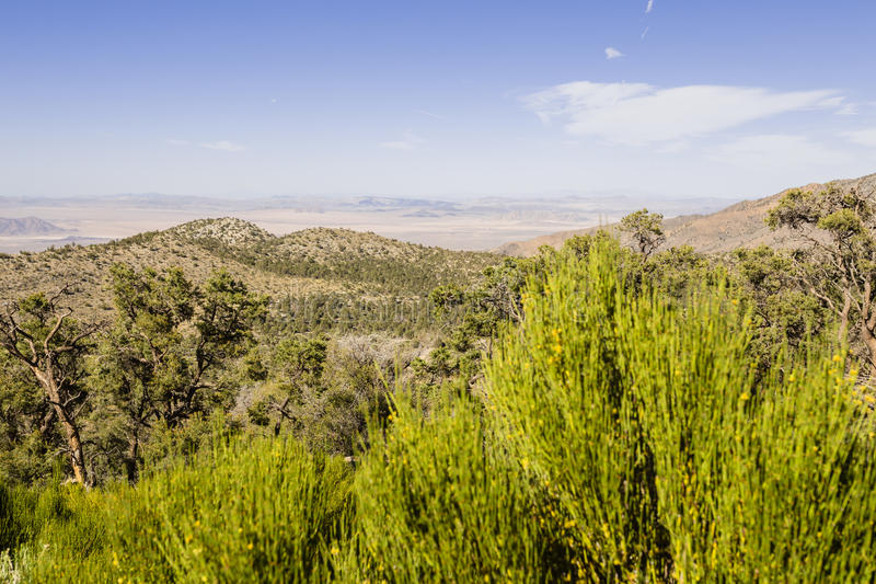 San Bernardino National Forest, Californira images stock