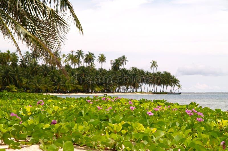 Download San Blas Islands stock image. Image of ocean, peaceful - 22772487
