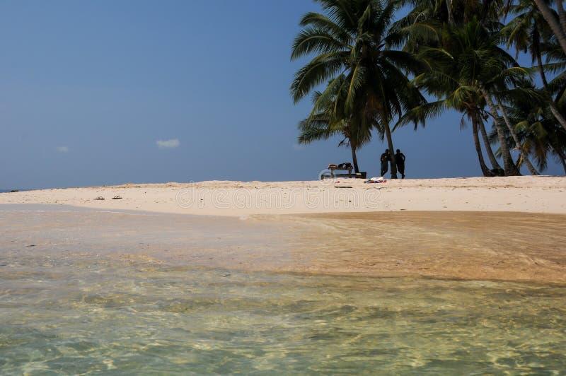 San Blas strandpalmträd royaltyfria bilder