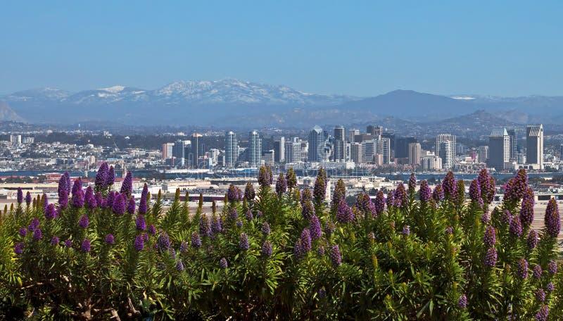 San Diego, Califórnia fotos de stock