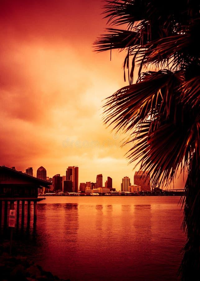 San Diego California solnedgånghorisont gömma i handflatan fotografering för bildbyråer