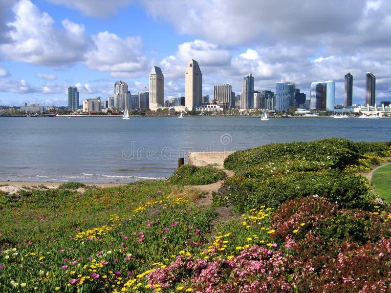 San Diego from Coronado. Downtown San Diego from Coronado with flowers