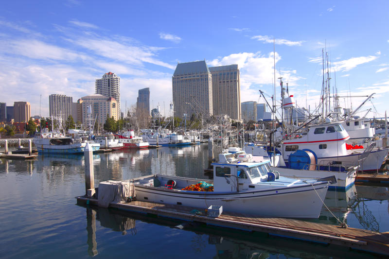 Download San Diego Marina. stock photo. Image of high, pelicans - 12355578