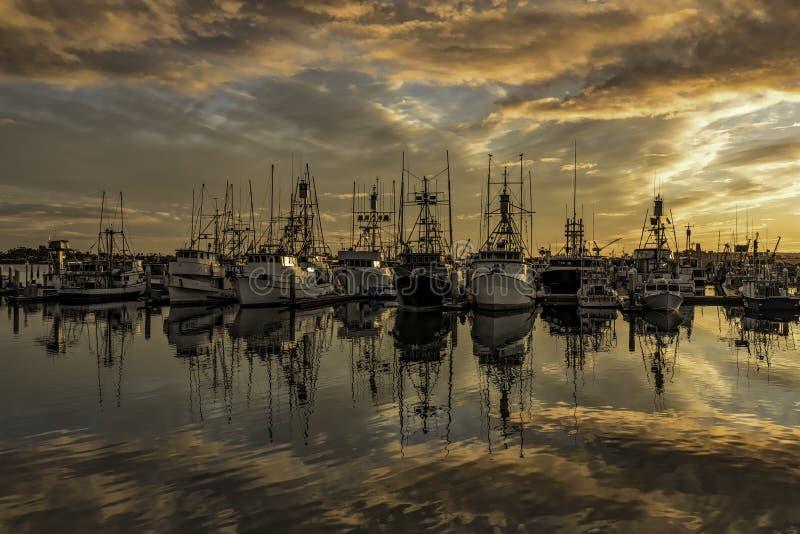 SAN DIEGO, połów flota NA schronienie zmierzchu obrazy stock