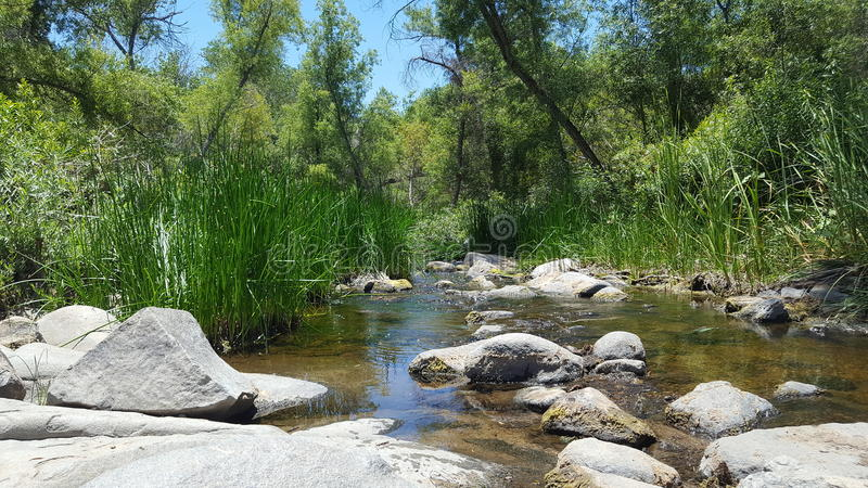 San Diego River photographie stock libre de droits