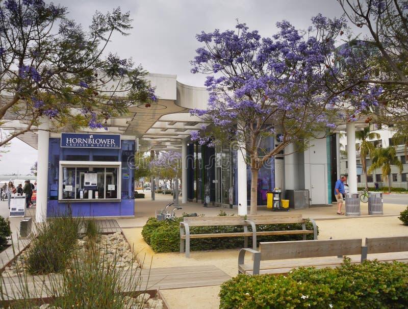 San Diego, Van de binnenstad, Embarcadero-Jachthaven stock foto's