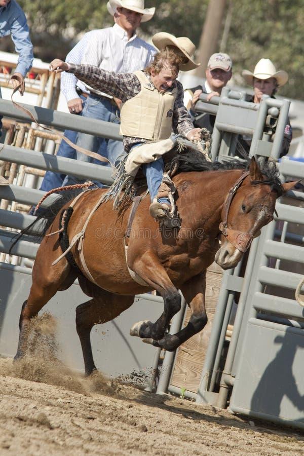 Free San Dimas Rodeo Saddle Bronc Royalty Free Stock Image - 16553676
